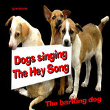 Dogs Singing the Hey Song