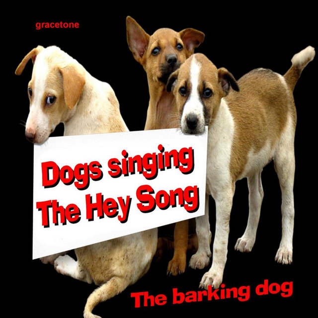 Dogs Singing the Hey Song - SIngle