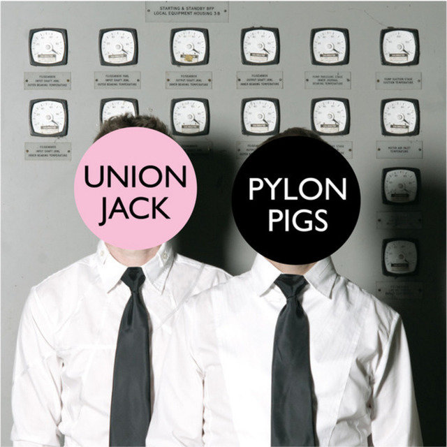 Pylon Pigs
