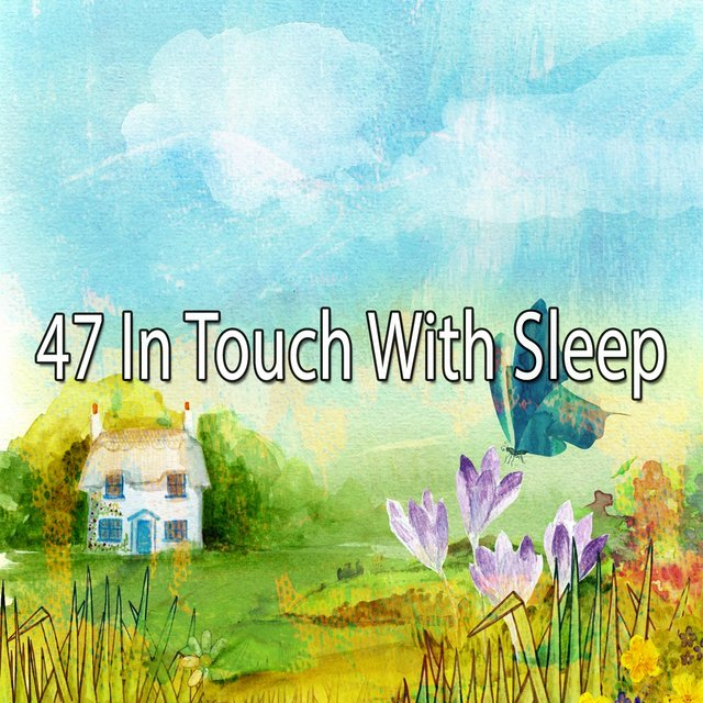 47 In Touch with Sleep