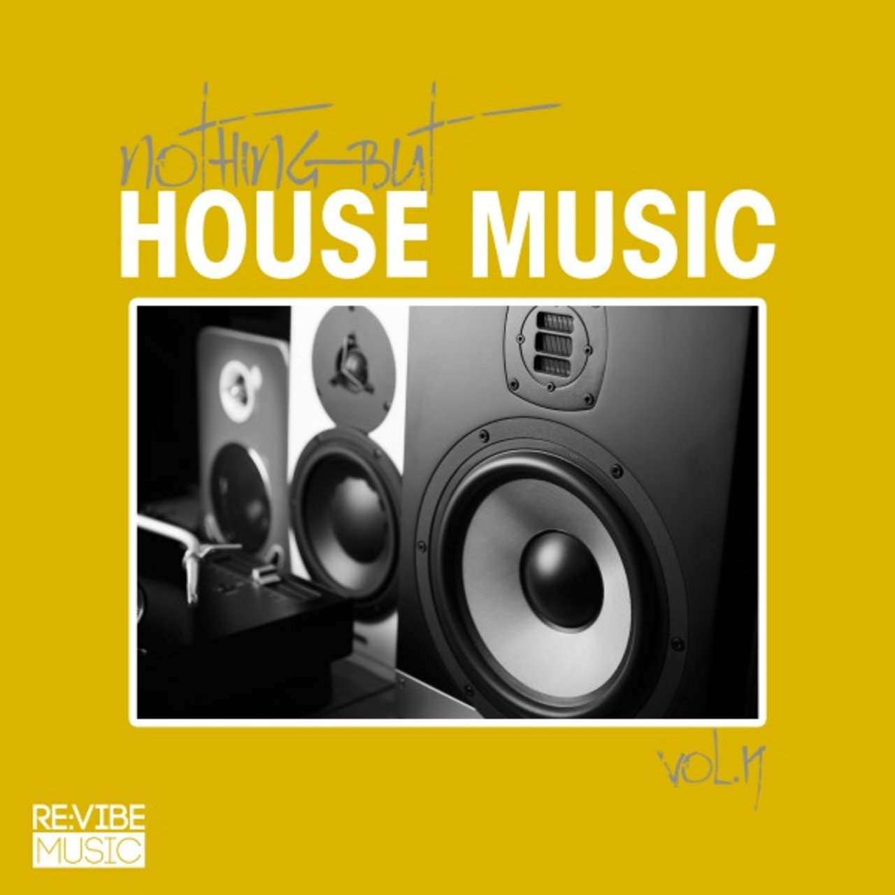 Nothing but House Music, Vol. 19