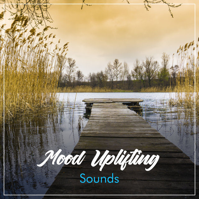 #15 Mood Uplifting Sounds for a Peaceful Sleep