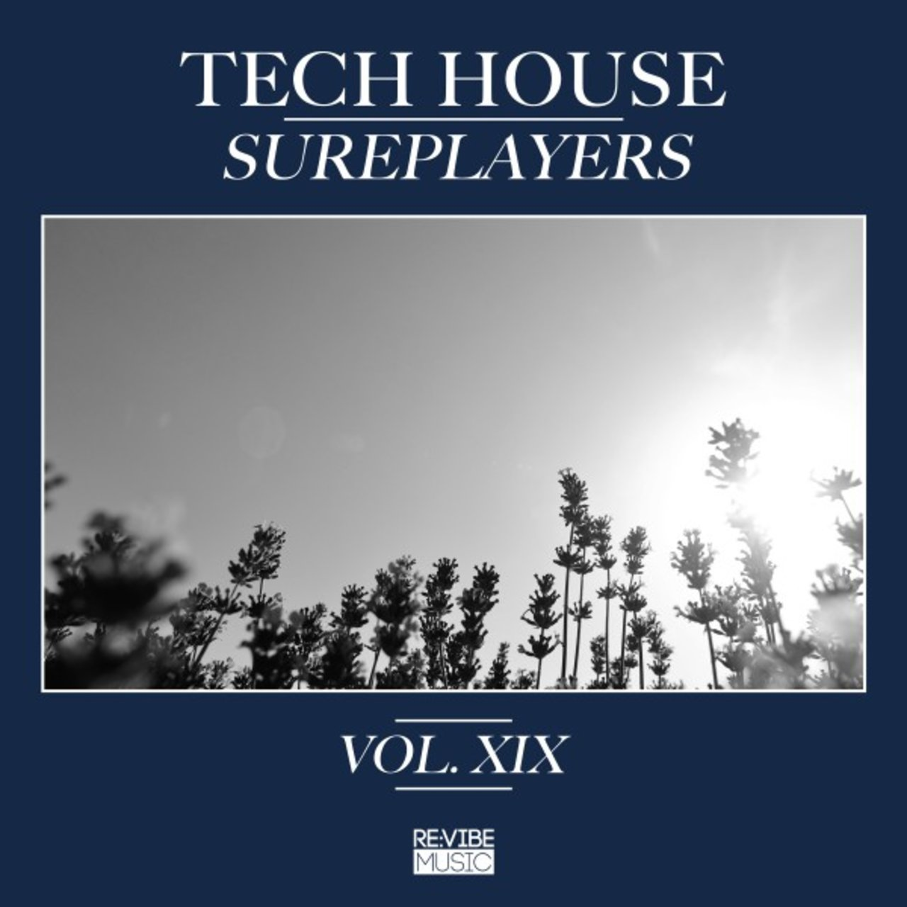 Tech House Sureplayers, Vol. 19