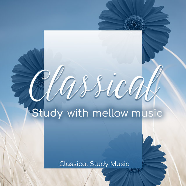 Classical Study with Mellow Music
