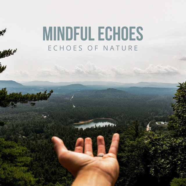 Mindful Echoes