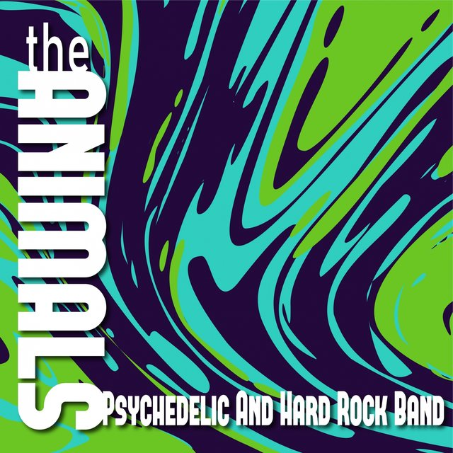 Psychedelic and Hard Rock Band