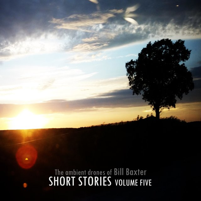 Short Stories, Vol. 5