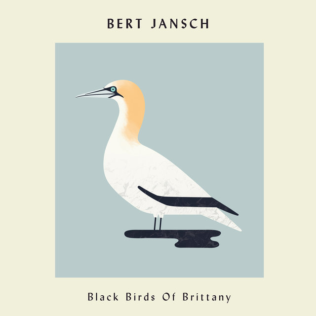 Black Birds of Brittany