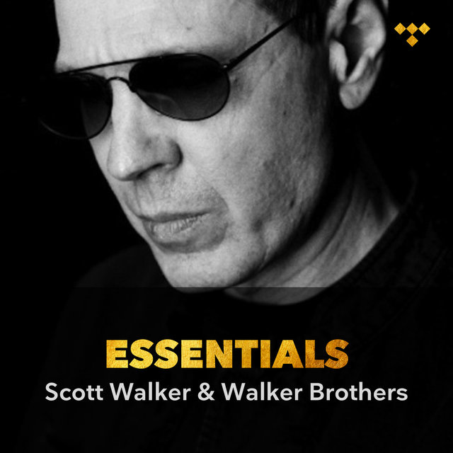 Scott Walker & The Walker Brothers Essentials