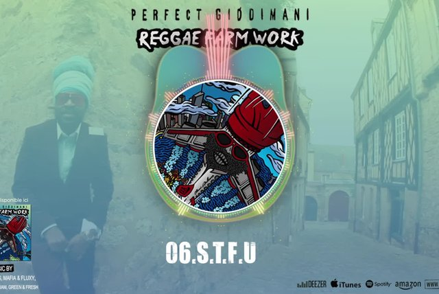 PERFECT GIDDIMANI - S.T.F.U. - IRIE ITES RECORDS