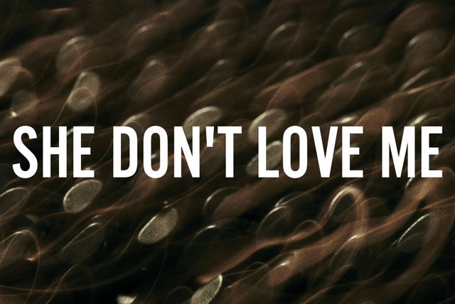 SHE DON'T LOVE ME (Lyric Video)