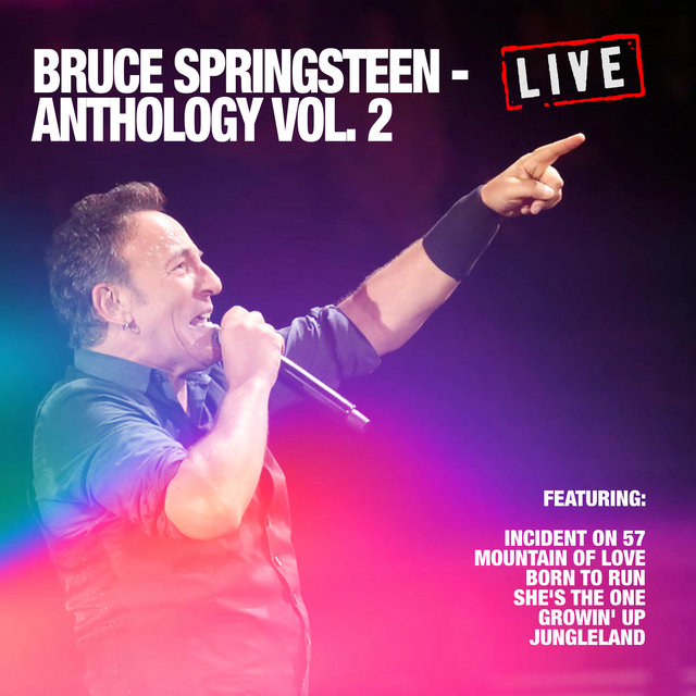 Bruce Springsteen - Anthology Vol. 2