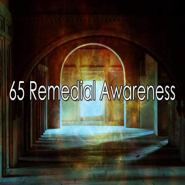 65 Remedial Awareness