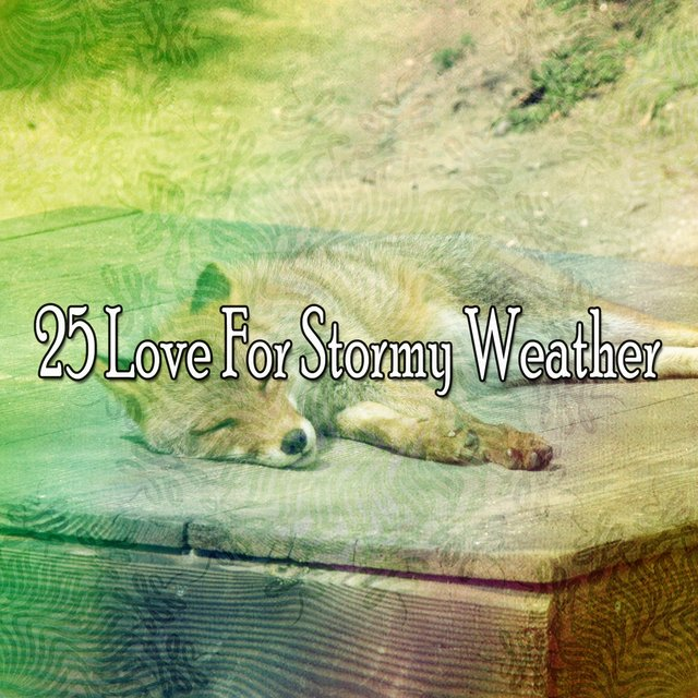 25 Love for Stormy Weather