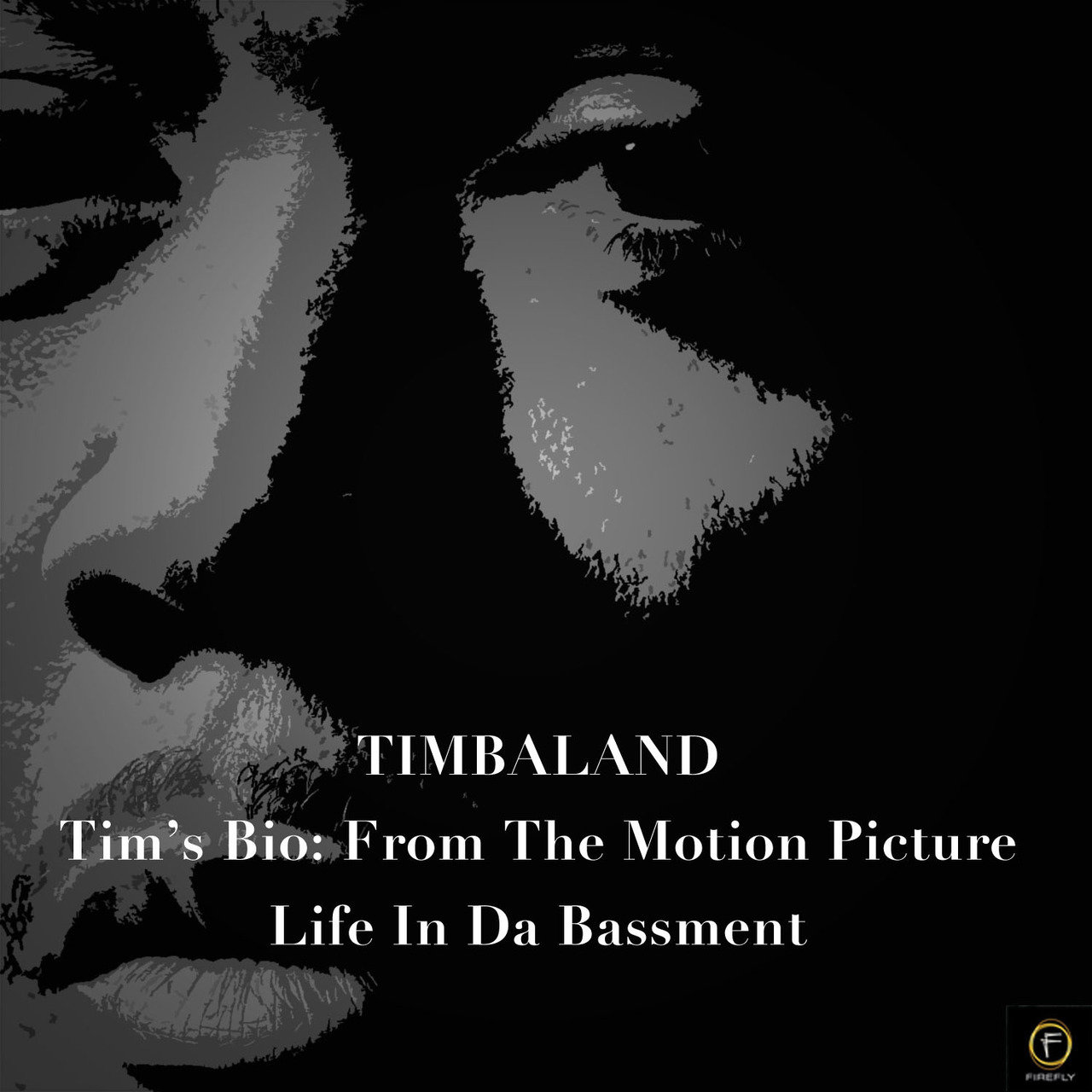 Tim's Bio: From The Motion Picture-Life From Da Bassment