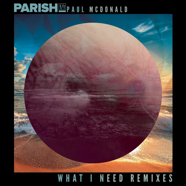 What I Need (Remixes)
