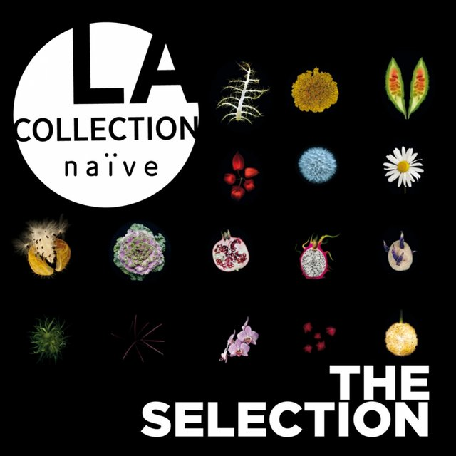 La collection naïve: The Selection