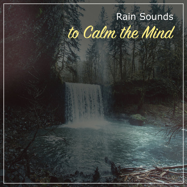 20 Chilled Rain Storms for Calm Inside