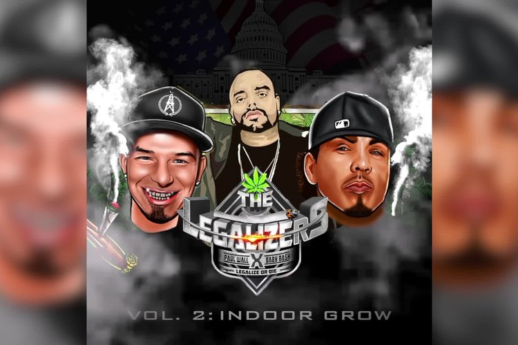 The Legalizers Vol. 2: Indoor Grow (Playa Preview)